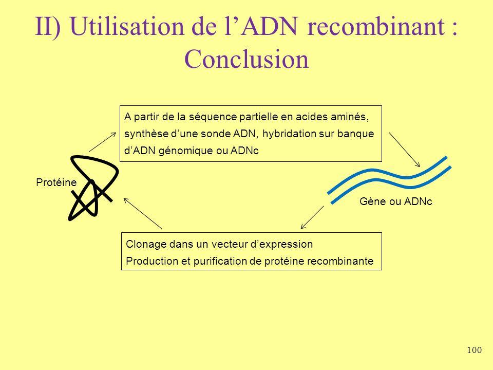 100 II) Utilisation de lADN recombinant : Conclusion Gène ou ADNc Protéine Clonage dans un vecteur dexpression Production et purification de protéine
