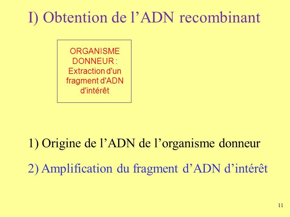 11 I) Obtention de lADN recombinant ORGANISME DONNEUR : Extraction d'un fragment d'ADN d'intérêt 1) Origine de lADN de lorganisme donneur 2) Amplifica