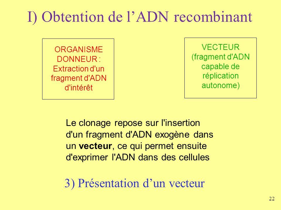 22 I) Obtention de lADN recombinant ORGANISME DONNEUR : Extraction d'un fragment d'ADN d'intérêt VECTEUR (fragment d'ADN capable de réplication autono