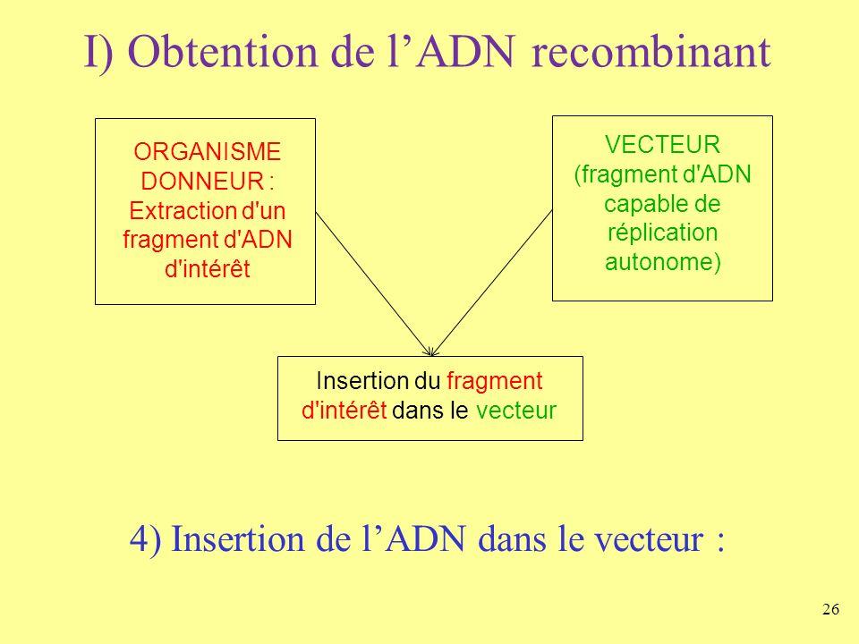 26 I) Obtention de lADN recombinant ORGANISME DONNEUR : Extraction d'un fragment d'ADN d'intérêt VECTEUR (fragment d'ADN capable de réplication autono