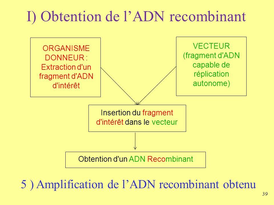 39 I) Obtention de lADN recombinant ORGANISME DONNEUR : Extraction d'un fragment d'ADN d'intérêt VECTEUR (fragment d'ADN capable de réplication autono
