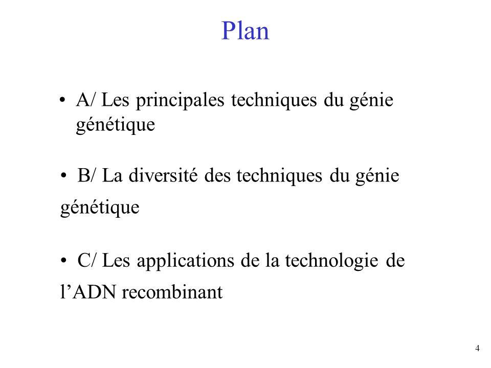 4 Plan A/ Les principales techniques du génie génétique B/ La diversité des techniques du génie génétique C/ Les applications de la technologie de lAD