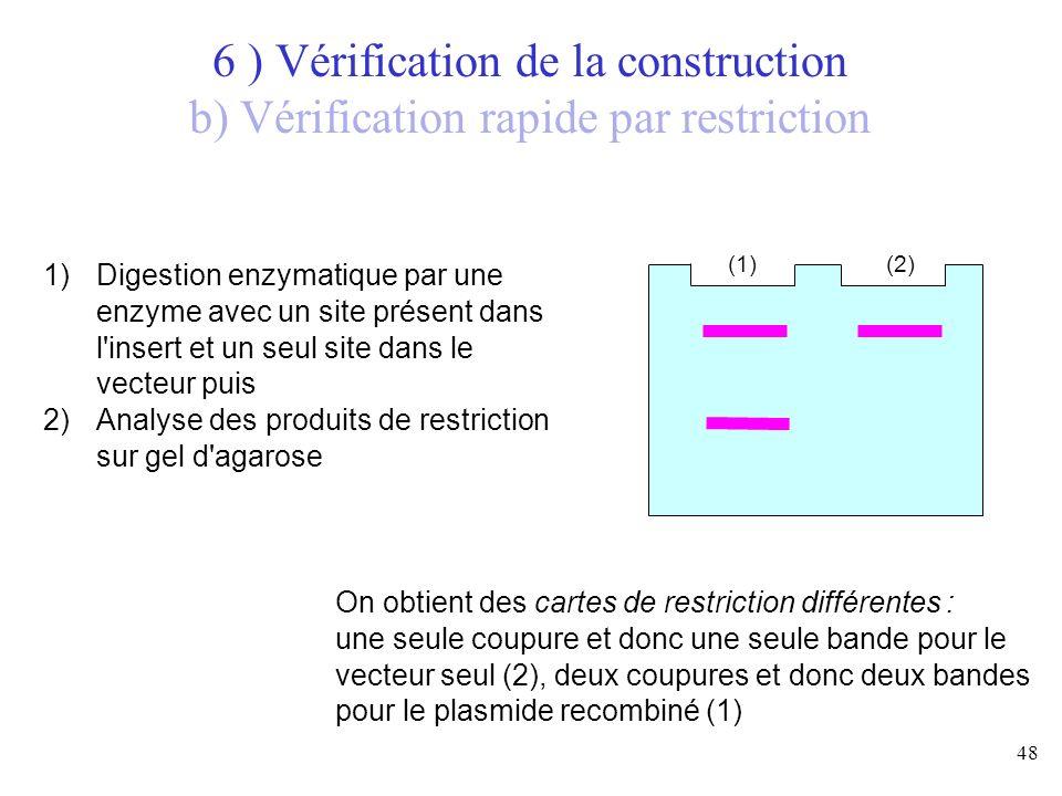 48 (1)(2) 1)Digestion enzymatique par une enzyme avec un site présent dans l'insert et un seul site dans le vecteur puis 2)Analyse des produits de res