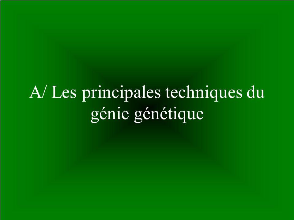 55 A/ Les principales techniques du génie génétique