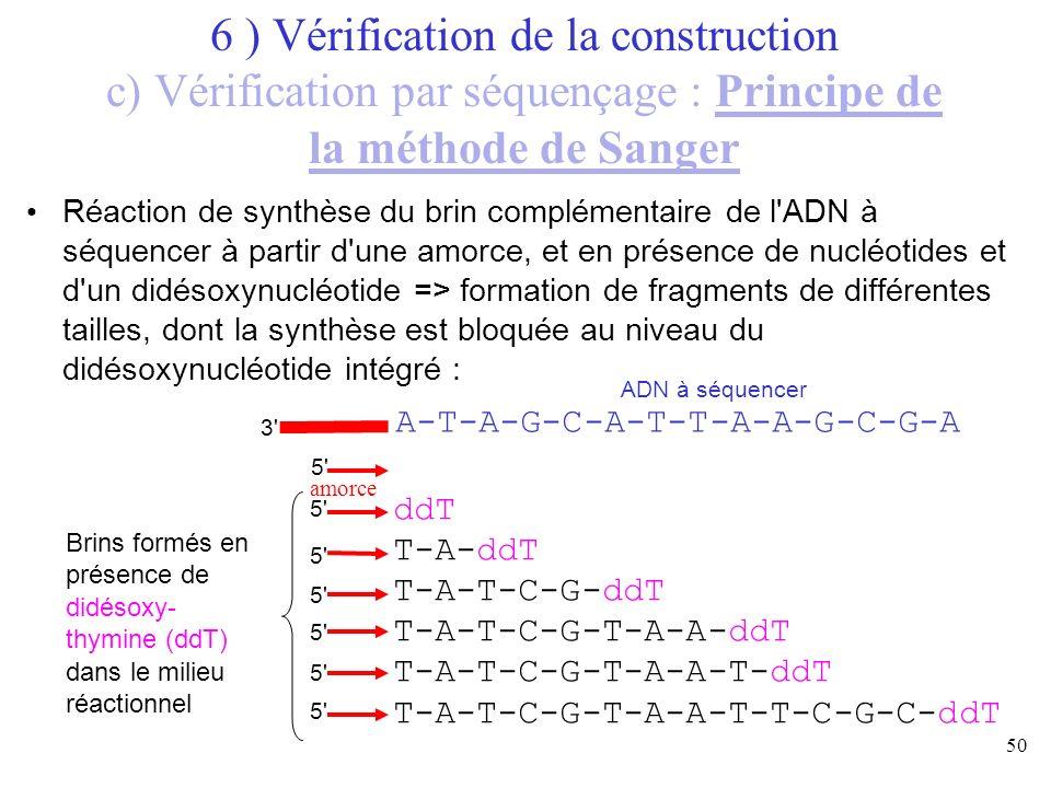 50 Réaction de synthèse du brin complémentaire de l'ADN à séquencer à partir d'une amorce, et en présence de nucléotides et d'un didésoxynucléotide =>