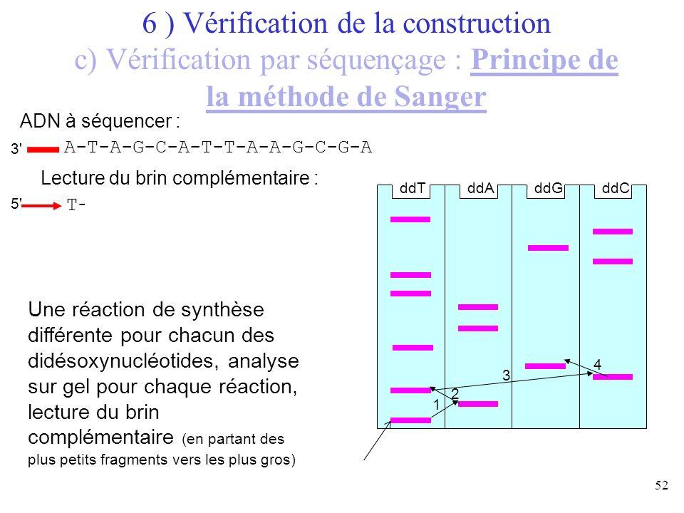 52 T-A-T-C-G-T-A-A-T-T-C-G-C-T A-T-A-G-C-A-T-T-A-A-G-C-G-A ddTddAddGddC ADN à séquencer : Lecture du brin complémentaire : Une réaction de synthèse di