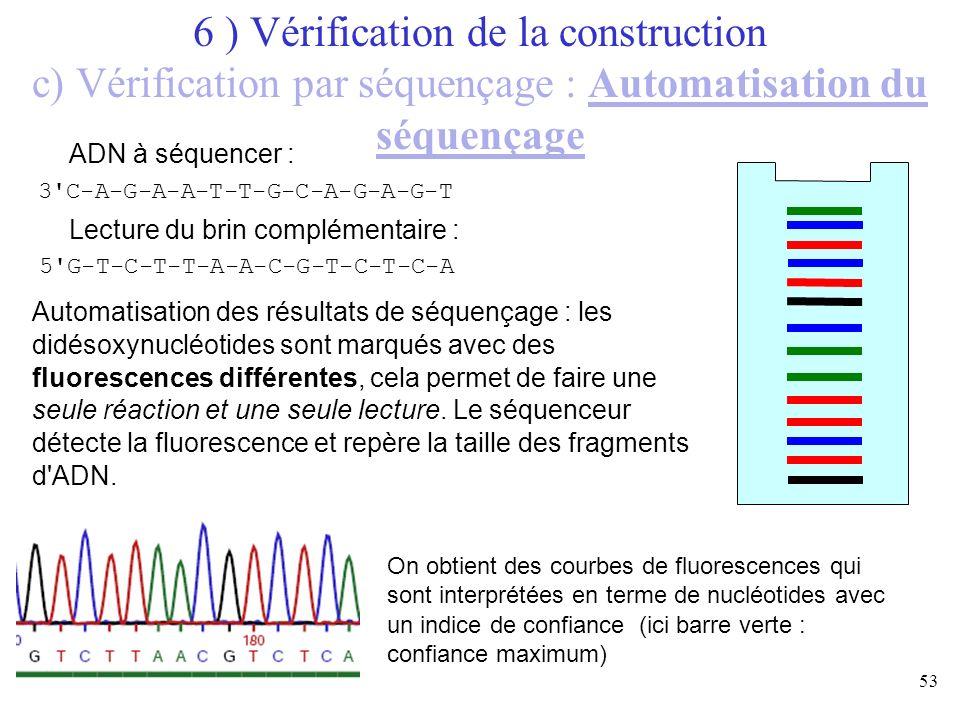 53 ADN à séquencer : Lecture du brin complémentaire : 5'G-T-C-T-T-A-A-C-G-T-C-T-C-A 3'C-A-G-A-A-T-T-G-C-A-G-A-G-T Automatisation des résultats de séqu