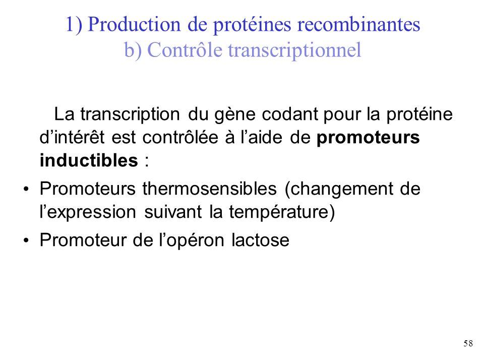 58 La transcription du gène codant pour la protéine dintérêt est contrôlée à laide de promoteurs inductibles : Promoteurs thermosensibles (changement