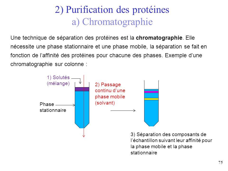 75 Une technique de séparation des protéines est la chromatographie. Elle nécessite une phase stationnaire et une phase mobile, la séparation se fait