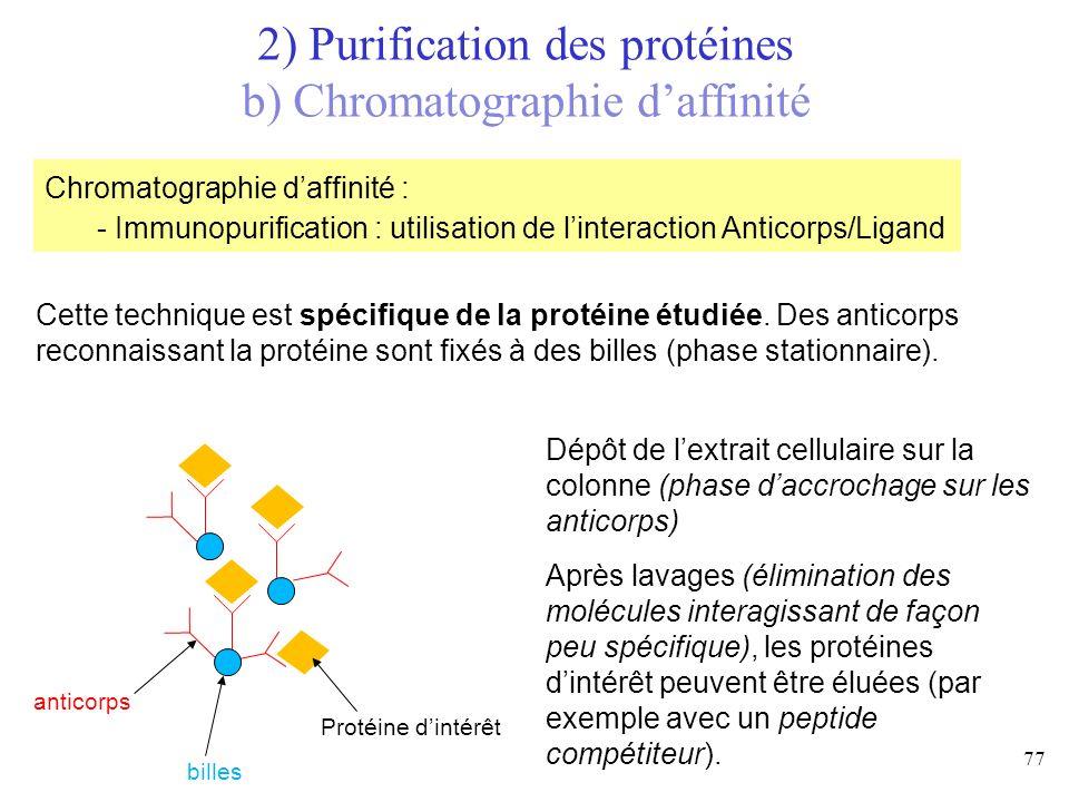 Cette technique est spécifique de la protéine étudiée. Des anticorps reconnaissant la protéine sont fixés à des billes (phase stationnaire). billes an