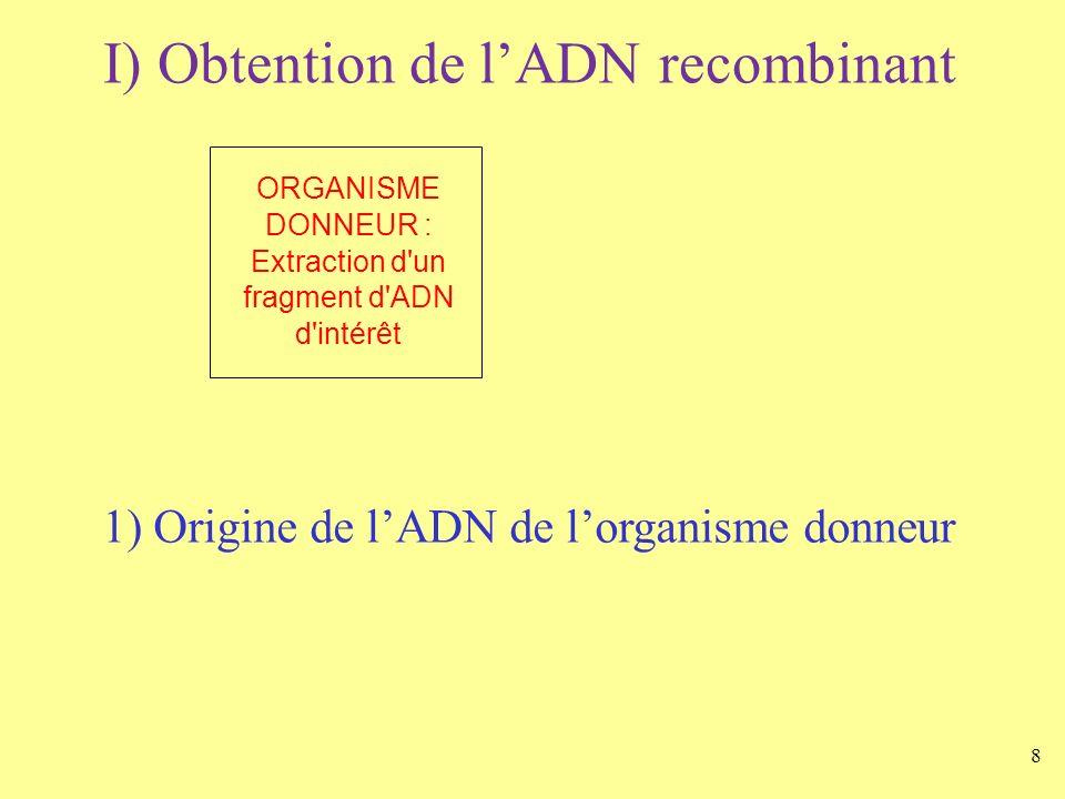 8 I) Obtention de lADN recombinant ORGANISME DONNEUR : Extraction d'un fragment d'ADN d'intérêt 1) Origine de lADN de lorganisme donneur