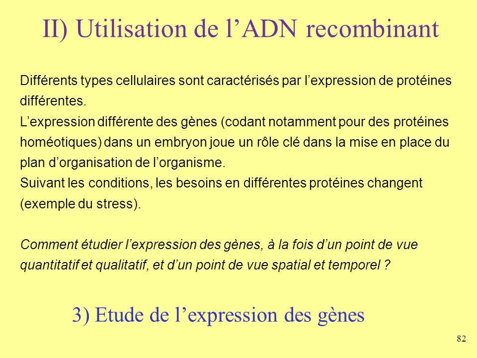 82 II) Utilisation de lADN recombinant Différents types cellulaires sont caractérisés par lexpression de protéines différentes. Lexpression différente