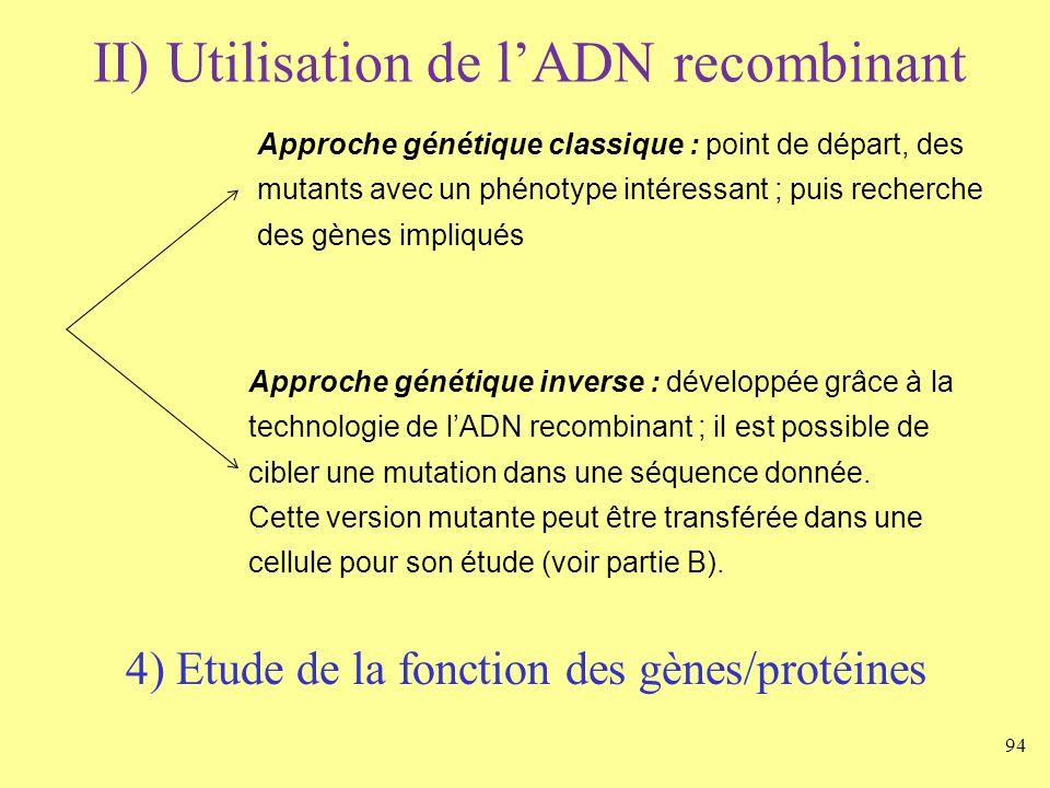 94 II) Utilisation de lADN recombinant 4) Etude de la fonction des gènes/protéines Approche génétique classique : point de départ, des mutants avec un
