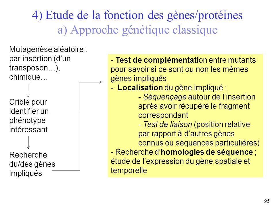 4) Etude de la fonction des gènes/protéines a) Approche génétique classique 95 Mutagenèse aléatoire : par insertion (dun transposon…), chimique… Cribl