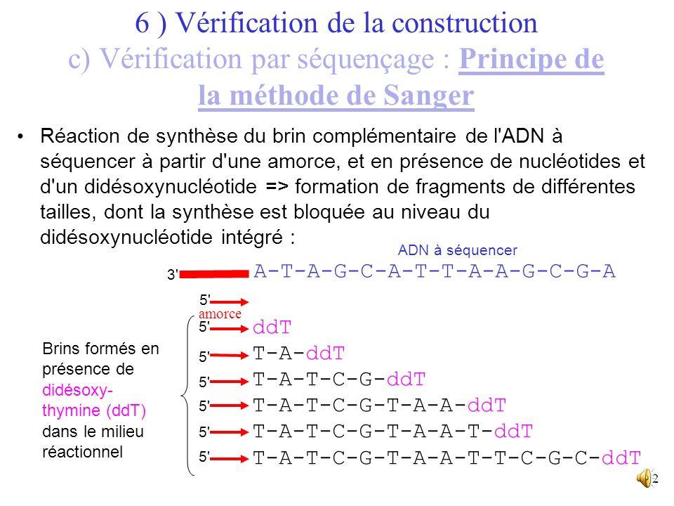 11 ADN de séquence connue ADN de séquence inconnue, à séquencer 6 ) Vérification de la construction c) Vérification par séquençage : Principe de la mé