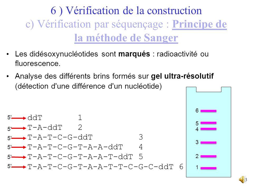 12 Réaction de synthèse du brin complémentaire de l'ADN à séquencer à partir d'une amorce, et en présence de nucléotides et d'un didésoxynucléotide =>