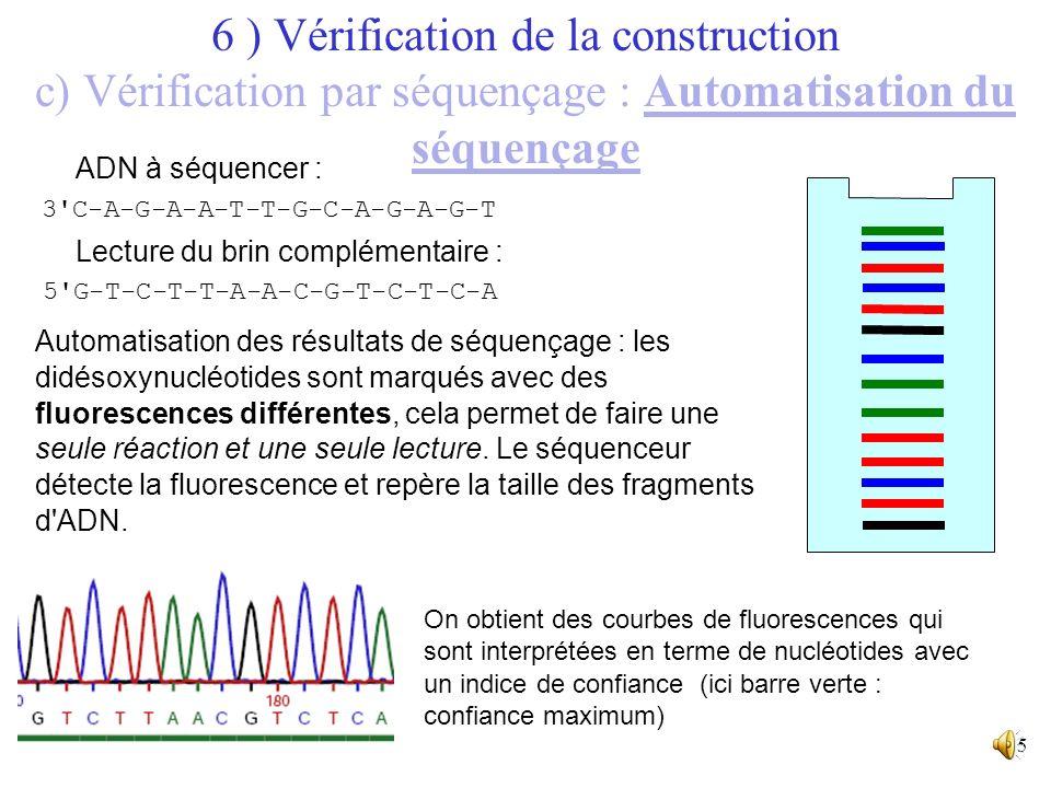 14 T-A-T-C-G-T-A-A-T-T-C-G-C-T A-T-A-G-C-A-T-T-A-A-G-C-G-A ddTddAddGddC ADN à séquencer : Lecture du brin complémentaire : Une réaction de synthèse di