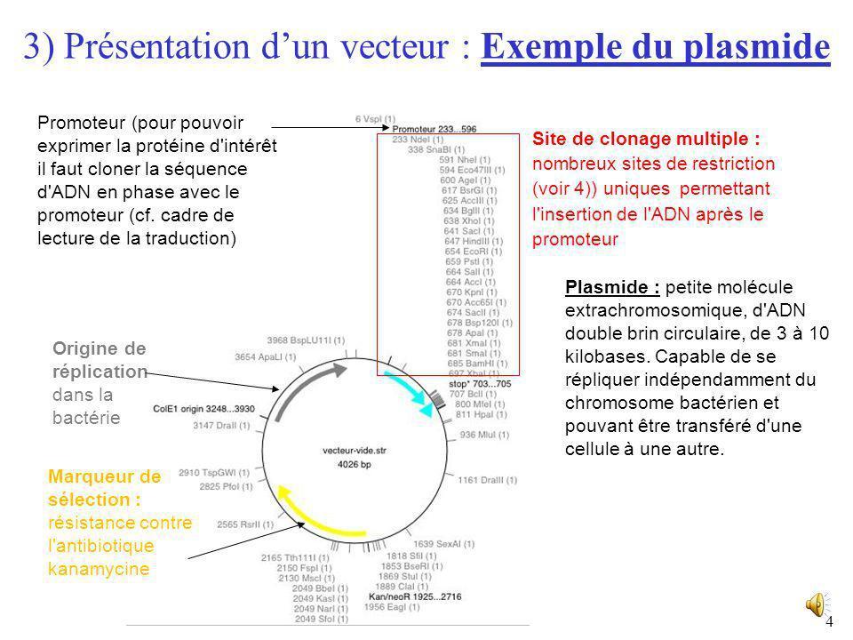 3 3) Présentation dun vecteur : Propriétés du vecteur Capacité de réplication autonome dans une cellule hôte donnée Possession dun site de clonage mul