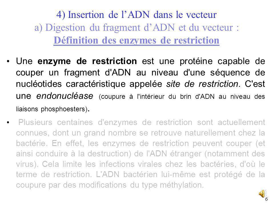 5 I) Obtention de lADN recombinant ORGANISME DONNEUR : Extraction d'un fragment d'ADN d'intérêt VECTEUR (fragment d'ADN capable de réplication autonom