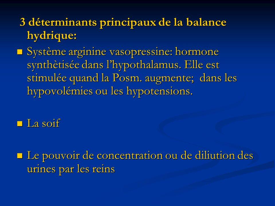 3 déterminants principaux de la balance hydrique: 3 déterminants principaux de la balance hydrique: Système arginine vasopressine: hormone synthètisée dans lhypothalamus.