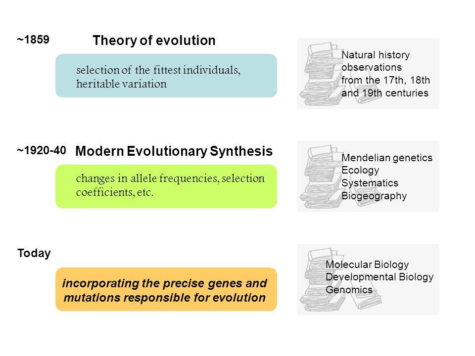 Three categories of genetic changes: (1) coding, (2) cis-regulatory, (3) other (gene loss, gene amplification, gene rearrangement, etc.)