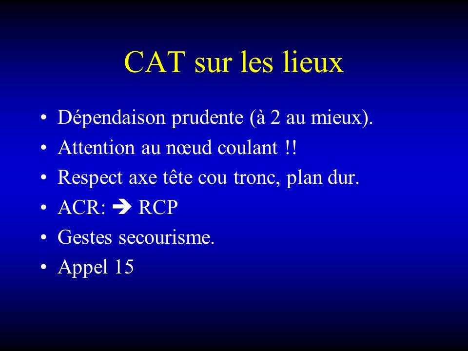 CAT sur les lieux Dépendaison prudente (à 2 au mieux). Attention au nœud coulant !! Respect axe tête cou tronc, plan dur. ACR: RCP Gestes secourisme.