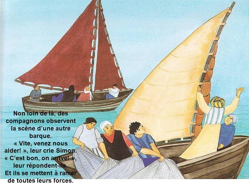 Non loin de là, des compagnons observent la scène dune autre barque.
