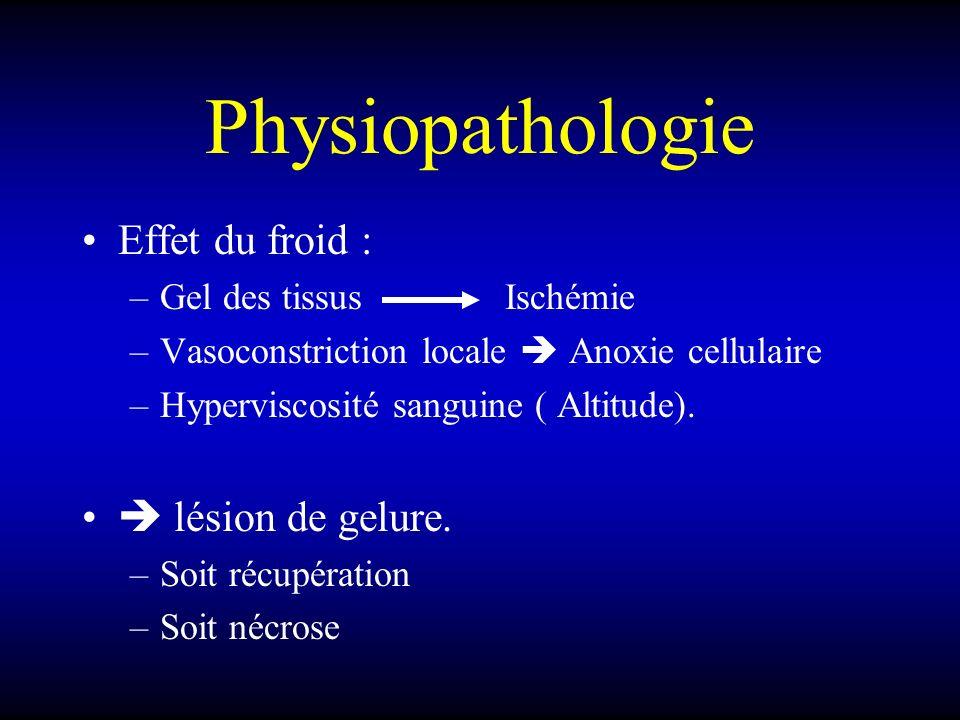 Physiopathologie Effet du froid : –Gel des tissus Ischémie –Vasoconstriction locale Anoxie cellulaire –Hyperviscosité sanguine ( Altitude). lésion de