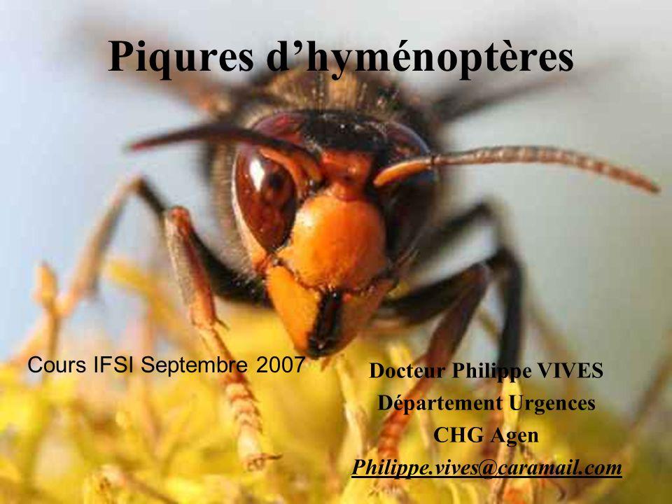 Piqures dhyménoptères Docteur Philippe VIVES Département Urgences CHG Agen Philippe.vives@caramail.com Cours IFSI Septembre 2007