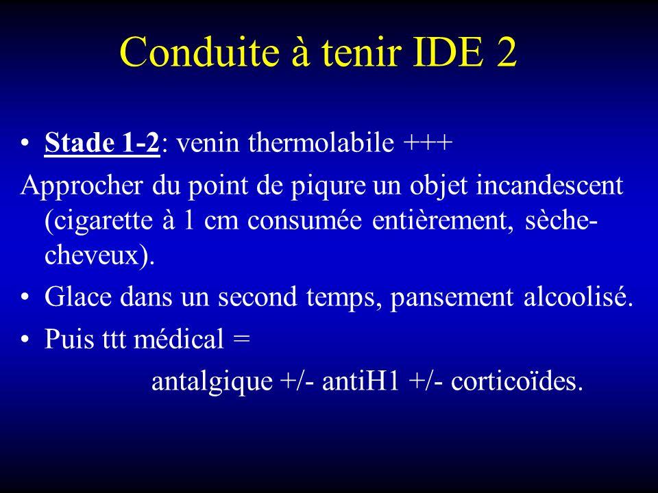 Conduite à tenir IDE 2 Stade 1-2: venin thermolabile +++ Approcher du point de piqure un objet incandescent (cigarette à 1 cm consumée entièrement, sèche- cheveux).