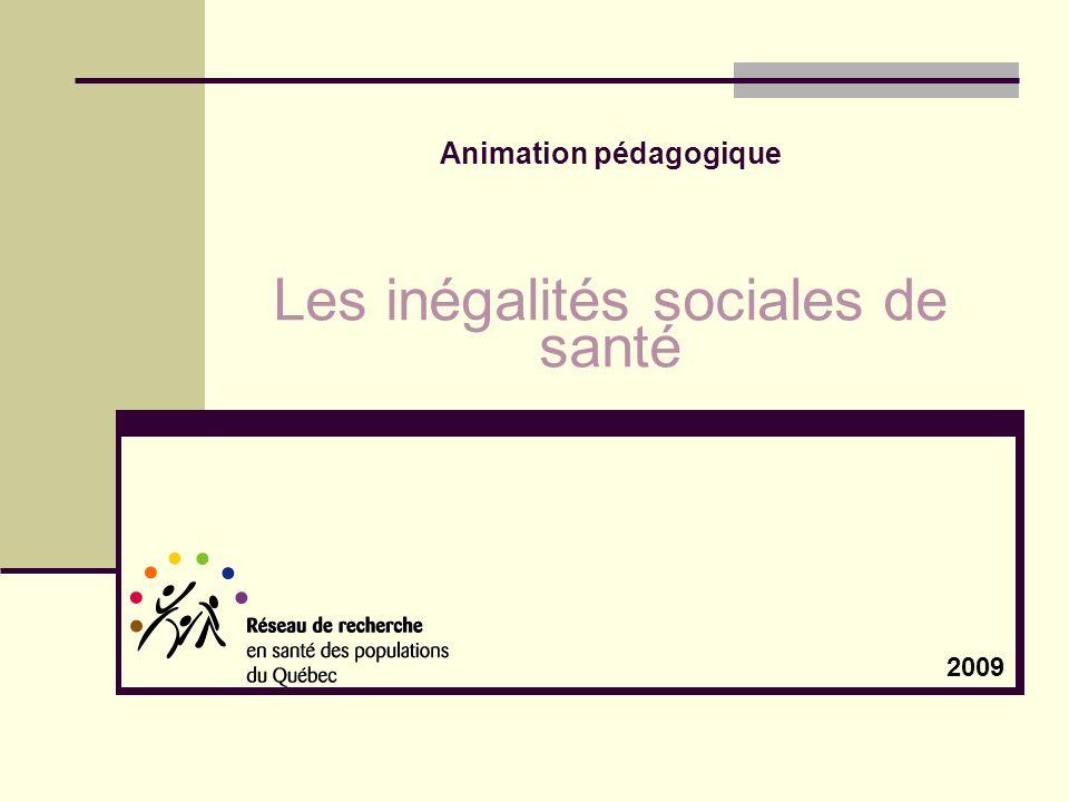 Animation pédagogique Les inégalités sociales de santé 2009