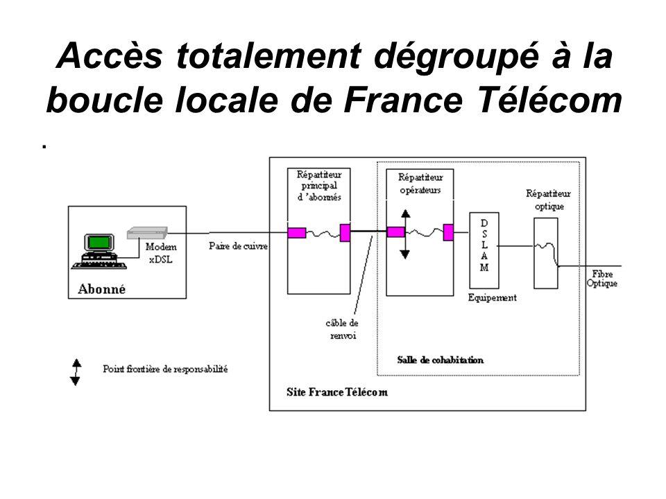 Accès totalement dégroupé à la boucle locale de France Télécom.