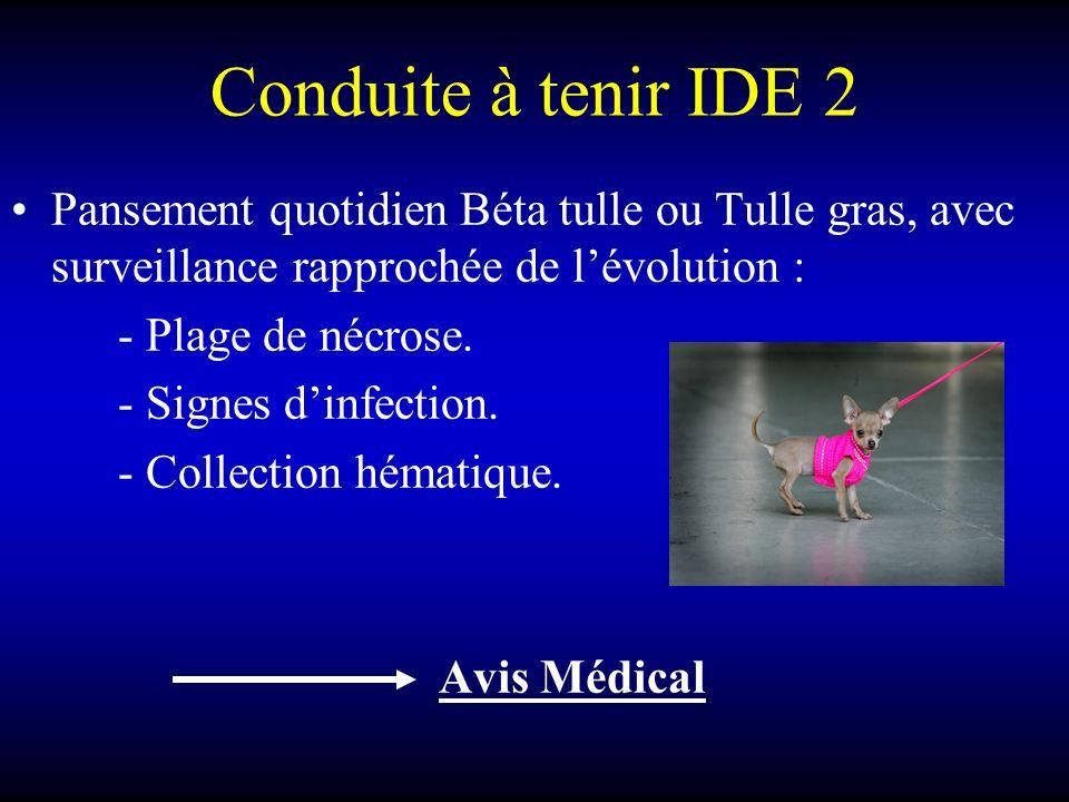 Conduite à tenir IDE 2 Pansement quotidien Béta tulle ou Tulle gras, avec surveillance rapprochée de lévolution : - Plage de nécrose. - Signes dinfect
