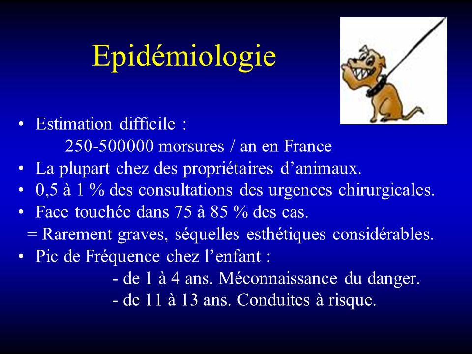 Epidémiologie Estimation difficile : 250-500000 morsures / an en France La plupart chez des propriétaires danimaux. 0,5 à 1 % des consultations des ur