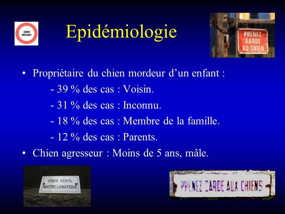 Epidémiologie Propriétaire du chien mordeur dun enfant : - 39 % des cas : Voisin. - 31 % des cas : Inconnu. - 18 % des cas : Membre de la famille. - 1