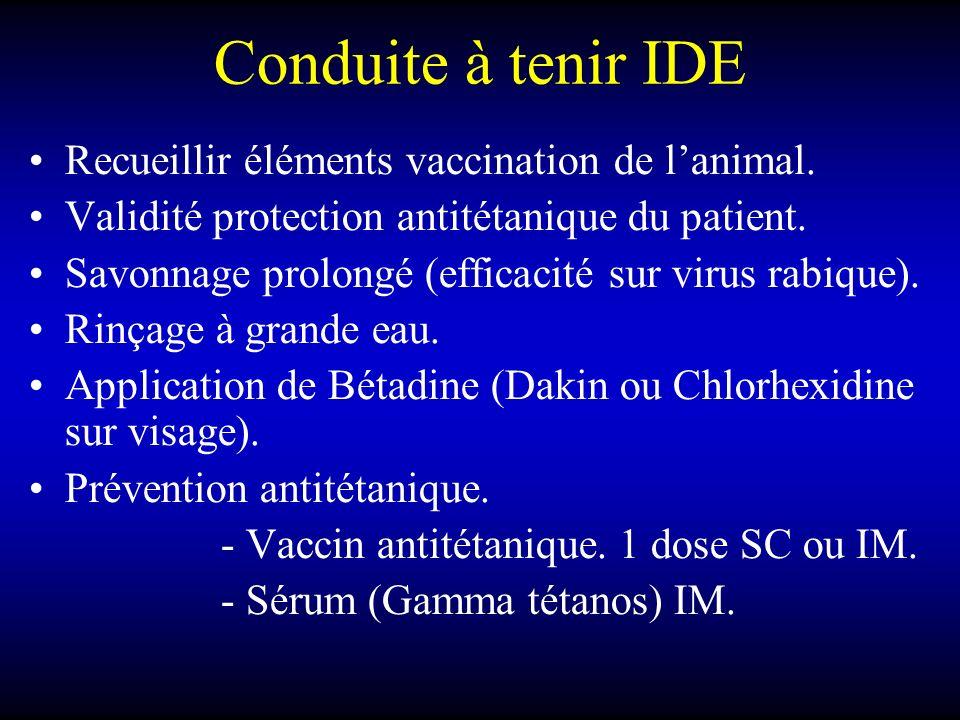Conduite à tenir IDE Recueillir éléments vaccination de lanimal. Validité protection antitétanique du patient. Savonnage prolongé (efficacité sur viru