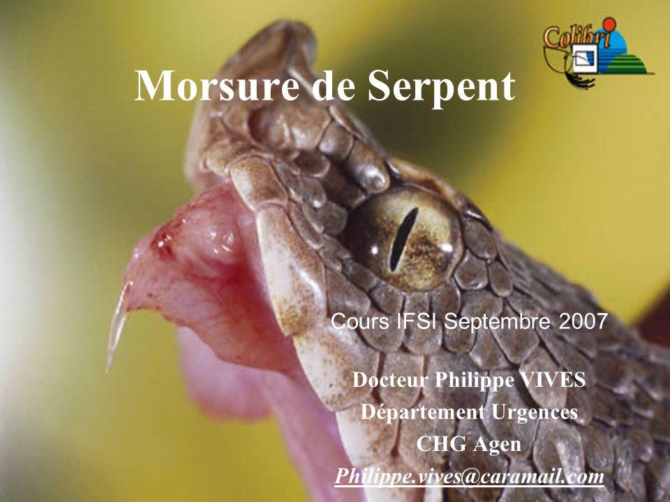 Morsure de Serpent Docteur Philippe VIVES Département Urgences CHG Agen Philippe.vives@caramail.com Cours IFSI Septembre 2007