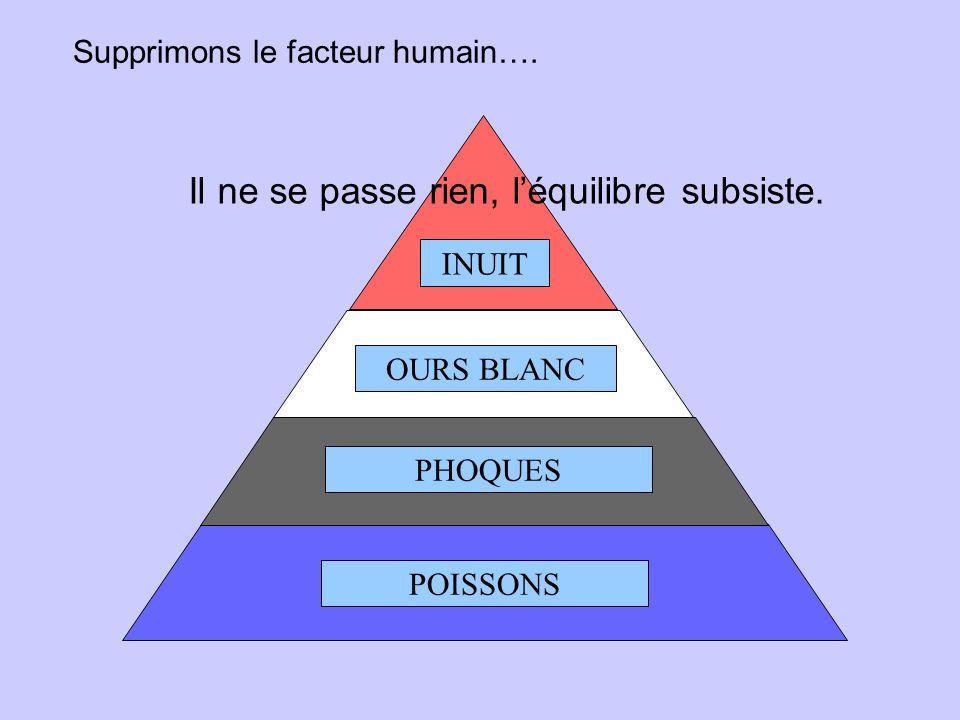 POISSONS PHOQUES OURS BLANC INUIT Dans un environnement équilibré, les choses se passent ainsi….