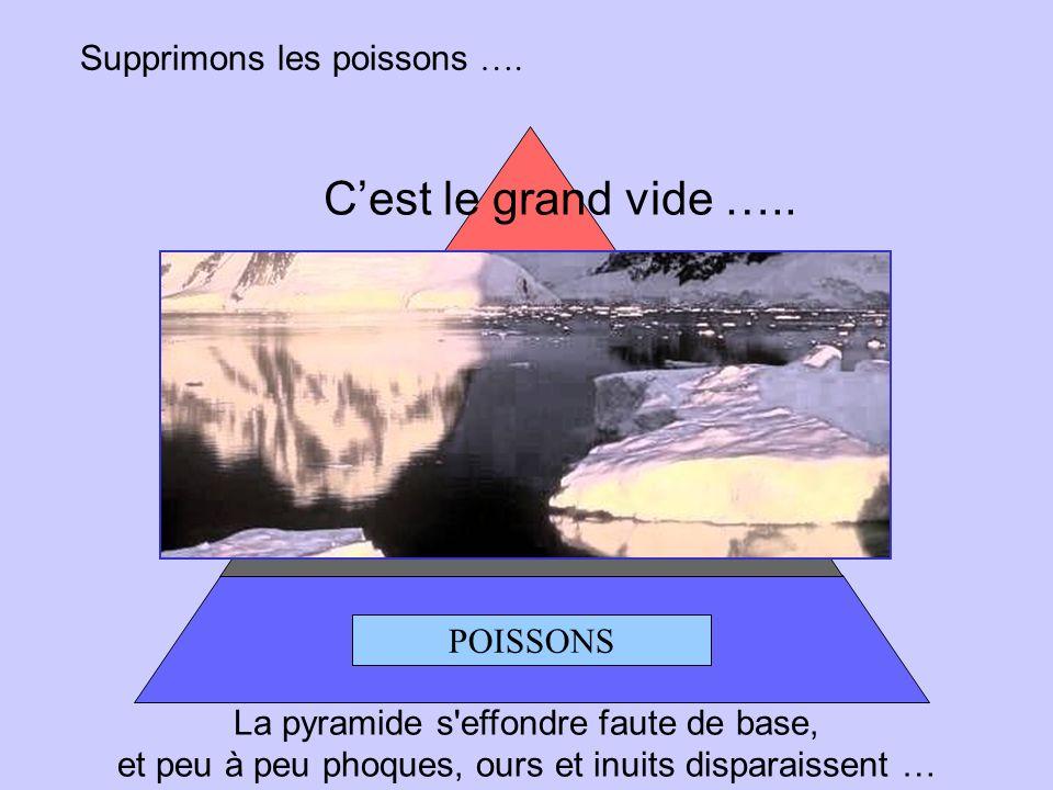 POISSONS PHOQUES OURS BLANC INUIT Supprimons le facteur humain…. Il ne se passe rien, léquilibre subsiste.