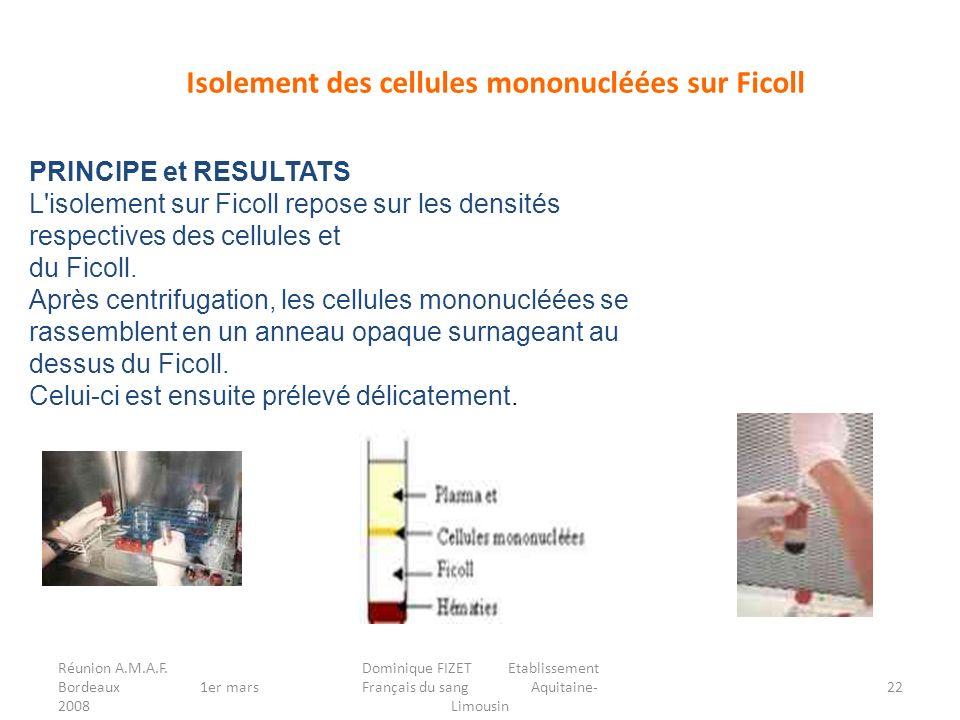 Réunion A.M.A.F. Bordeaux 1er mars 2008 Dominique FIZET Etablissement Français du sang Aquitaine- Limousin 22 Isolement des cellules mononucléées sur