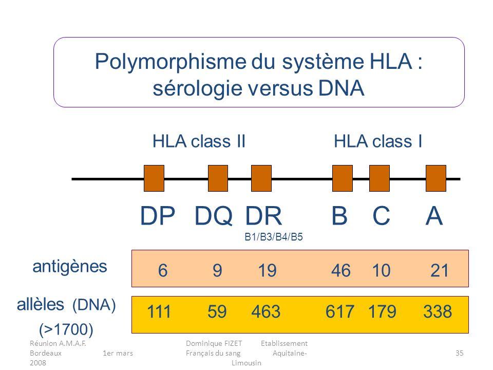 Réunion A.M.A.F. Bordeaux 1er mars 2008 Dominique FIZET Etablissement Français du sang Aquitaine- Limousin 35 Polymorphisme du système HLA : sérologie