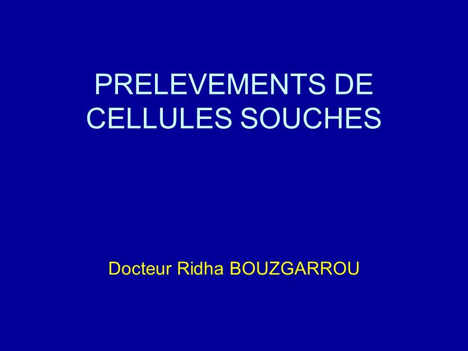 PRELEVEMENTS DE CELLULES SOUCHES Docteur Ridha BOUZGARROU