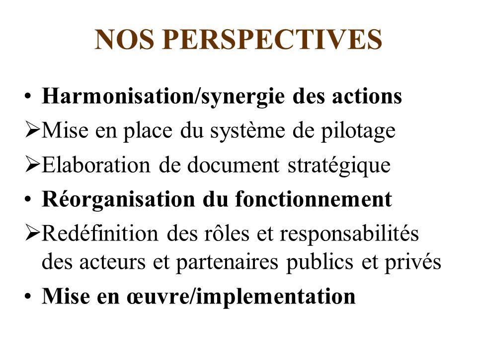NOS PERSPECTIVES Harmonisation/synergie des actions Mise en place du système de pilotage Elaboration de document stratégique Réorganisation du fonctio