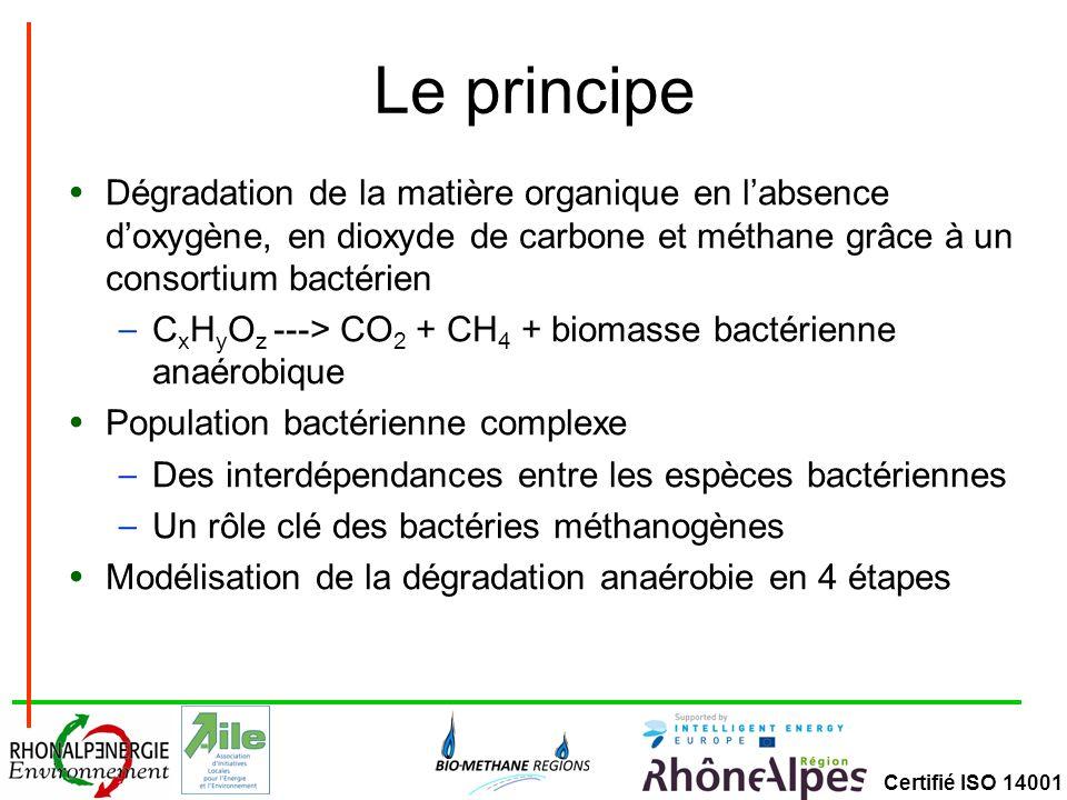 Certifié ISO 14001 Organiques Inorganiques Mélange de substrats Glucides Protéines Lipides Lignines Eau Métaux lourds, minéraux (P,K,Na, Ca…) En solution : Sucre (chaînes courtes) Acides aminés Acides gras Acides (chaînes courtes) Alcools CO 2 et H 2 Acides acétiques Alcools CO 2 et H 2 HydrolyseAcidogénèseAcétogénèseMéthanogénèse LigninesEauMétaux lourds, minéraux (P,K,Na, Ca…) CH 4, CO 2 et H 2 O H2SH2S Réduction des sulfates NH 4,NH 3 Produits de la dégradation protéique Homoacétogène Biogaz Digestat Processus de méthanisation