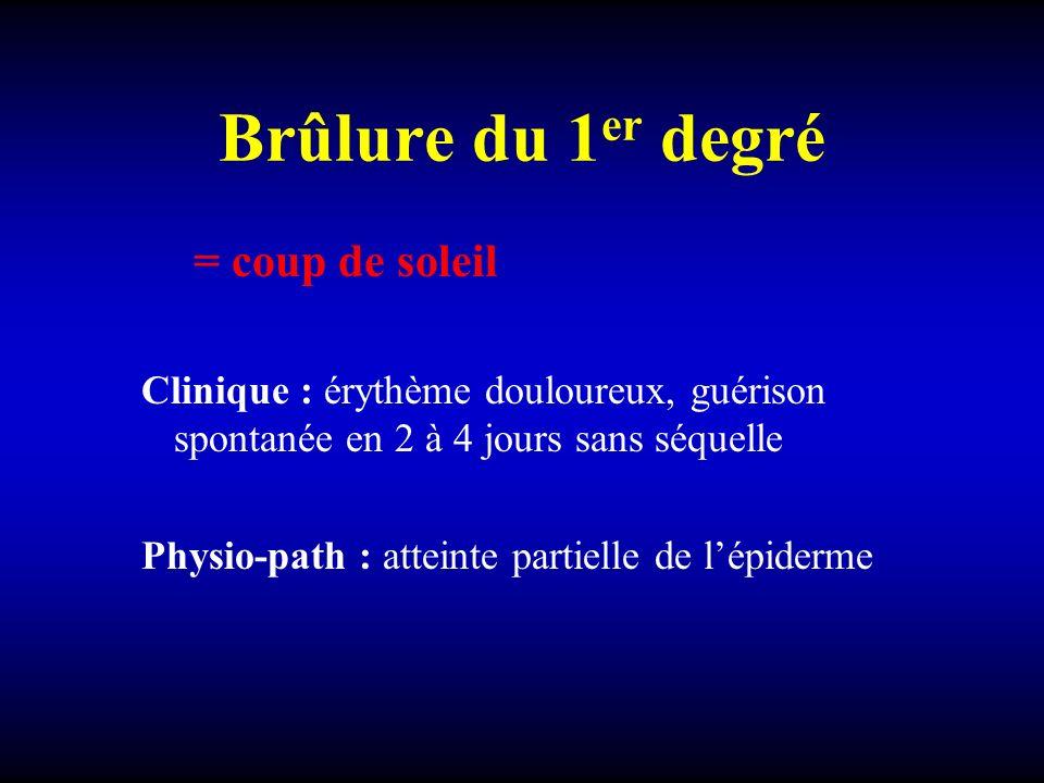 Brûlure du 1 er degré = coup de soleil Clinique : érythème douloureux, guérison spontanée en 2 à 4 jours sans séquelle Physio-path : atteinte partiell