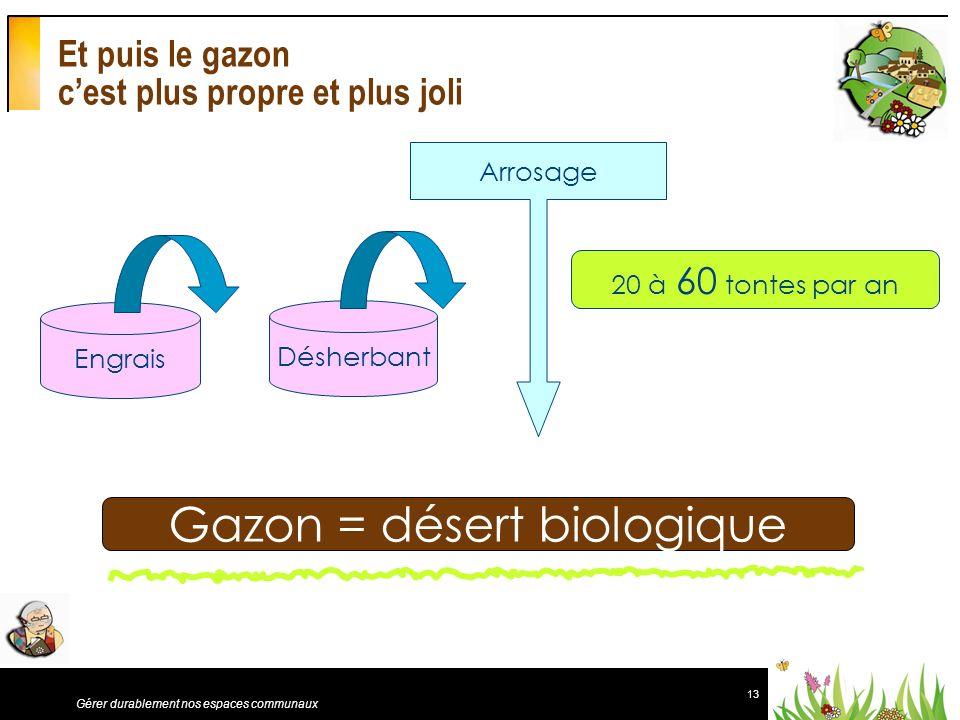 13 Gérer durablement nos espaces communaux Et puis le gazon cest plus propre et plus joli Engrais Désherbant Arrosage Gazon = désert biologique 20 à 6