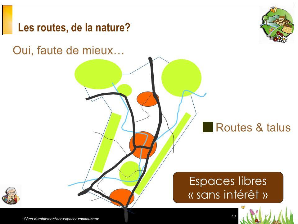 19 Gérer durablement nos espaces communaux Les routes, de la nature? Espaces libres « sans intérêt » Oui, faute de mieux… Routes & talus