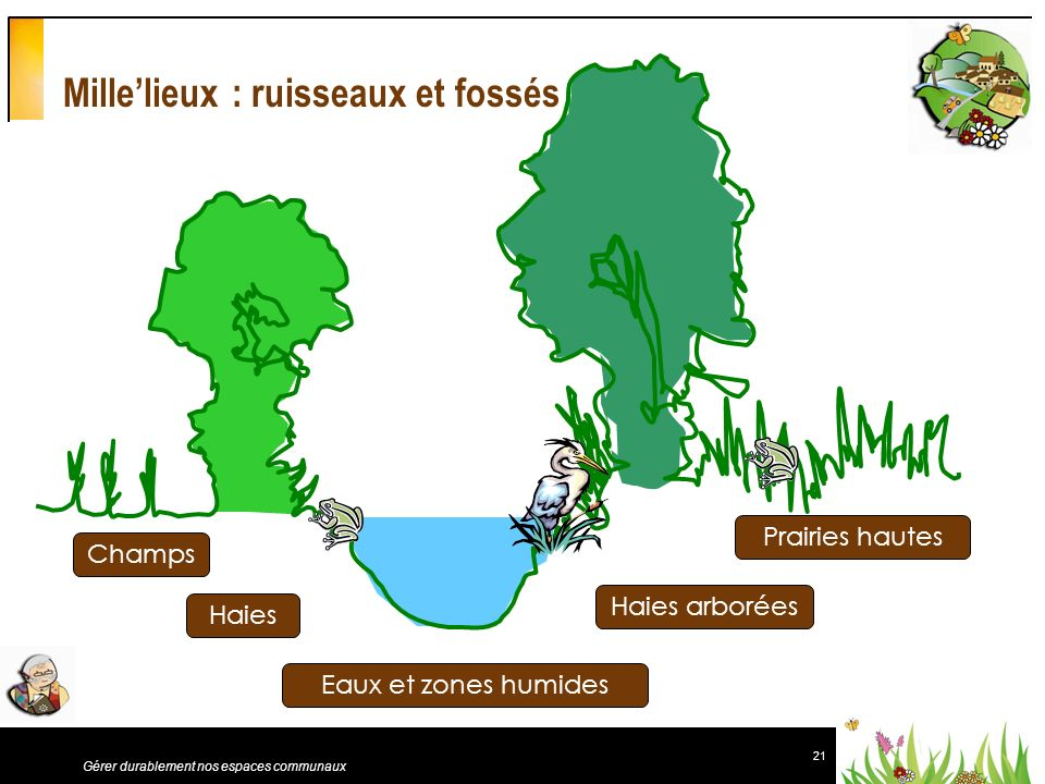 21 Gérer durablement nos espaces communaux Millelieux : ruisseaux et fossés Champs Haies Eaux et zones humides Haies arborées Prairies hautes