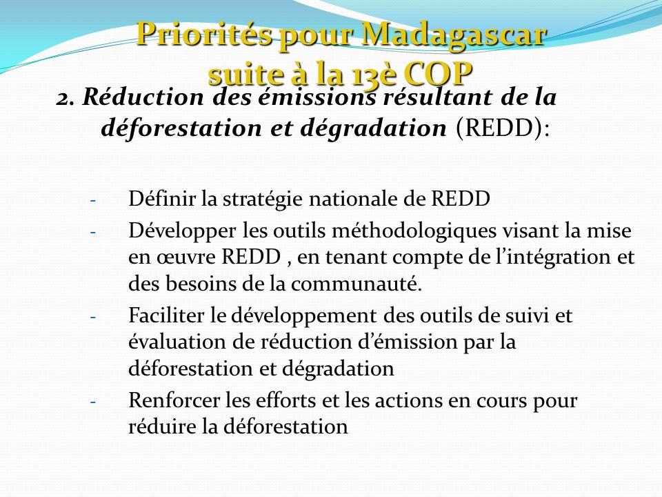 2. Réduction des émissions résultant de la déforestation et dégradation (REDD): - Définir la stratégie nationale de REDD - Développer les outils métho