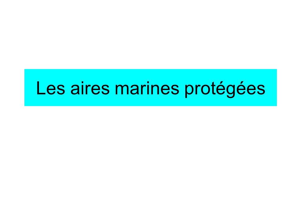 Les aires marines protégées